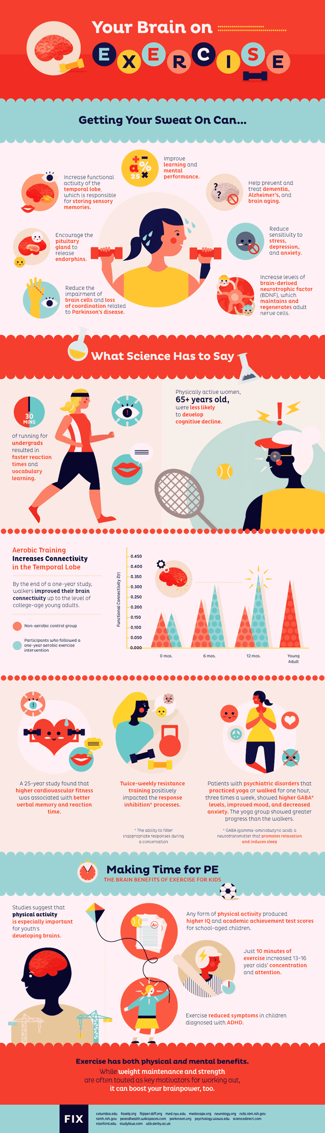 connection between exercises and the brain