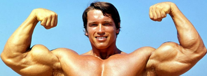 Arnold Schwarzenegger workout routine