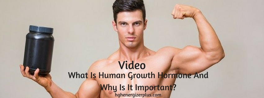 What Is Human Growth Hormone